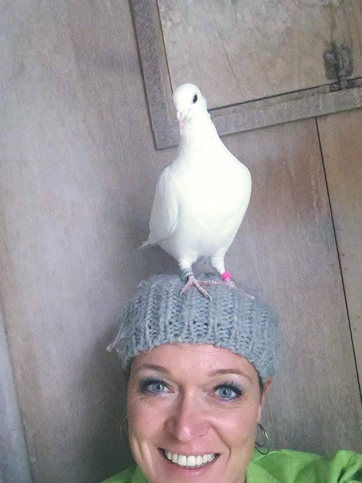 pigeons woman 013