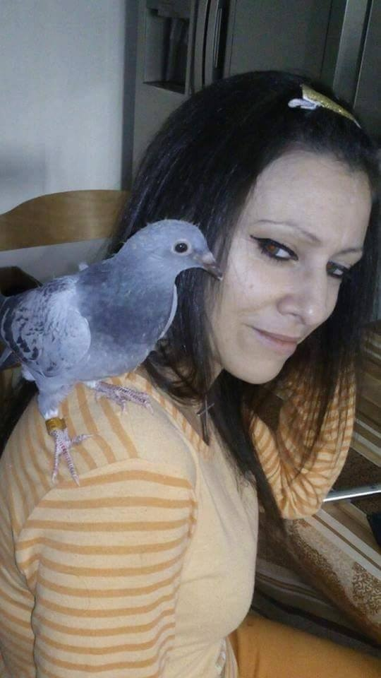 pigeons woman 026