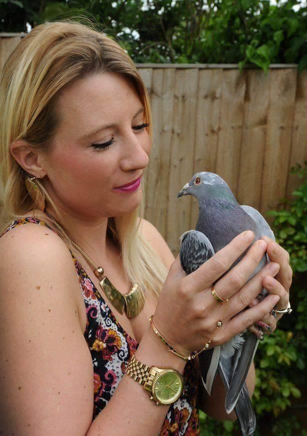 pigeons woman 106