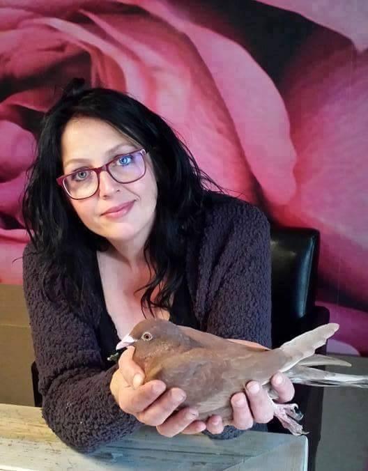 pigeons woman 114