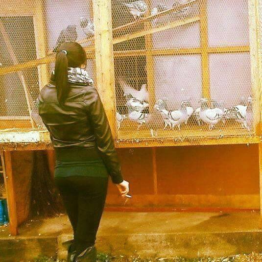 pigeons woman 121
