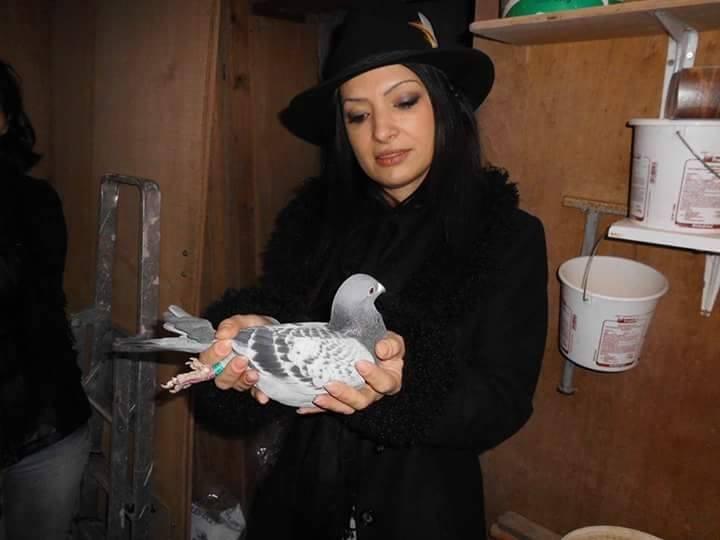 pigeons woman 129
