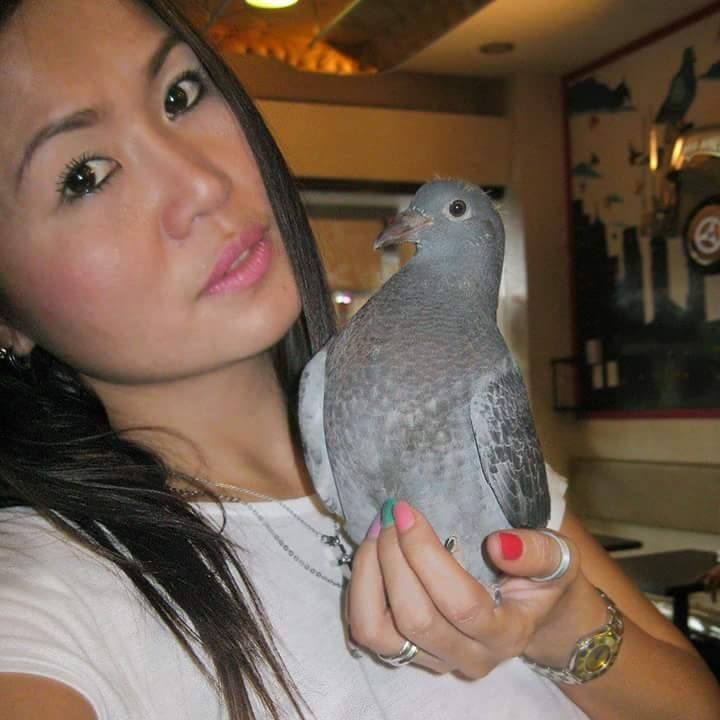 pigeons woman 145