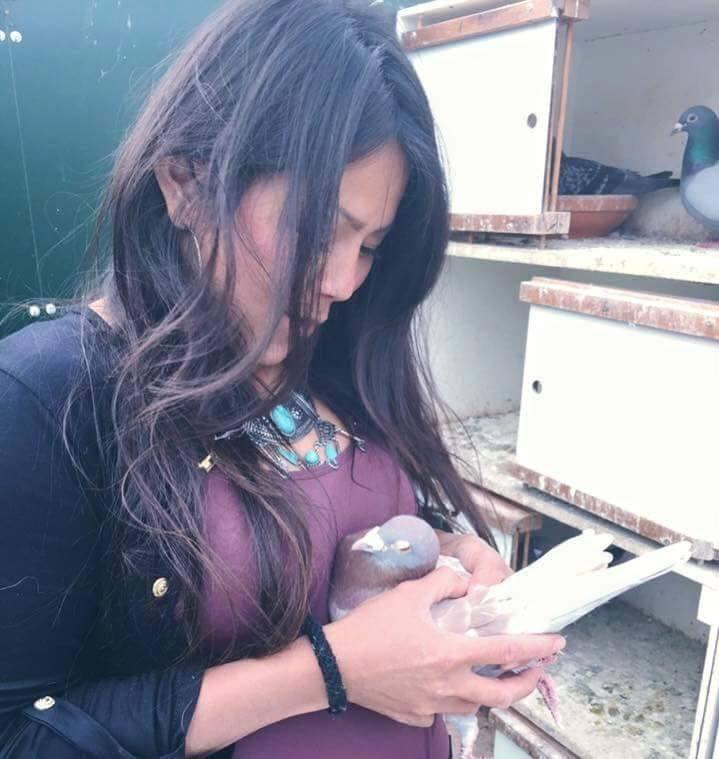 pigeons woman 146