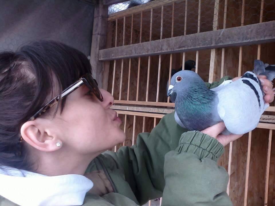 pigeons woman 150