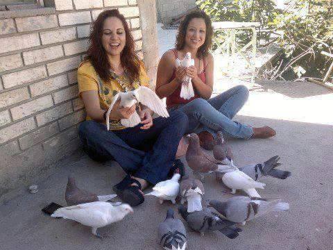 pigeons woman 153