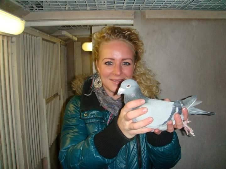 pigeons woman 155