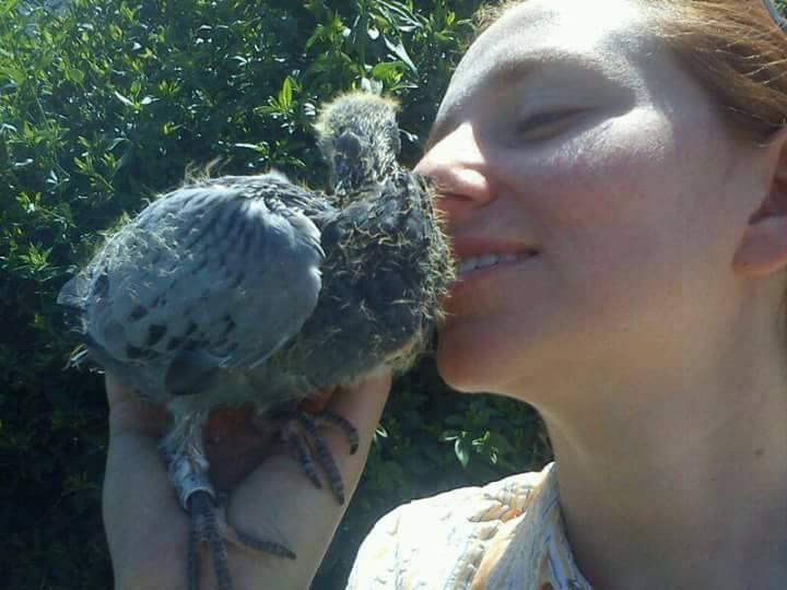 pigeons woman 160