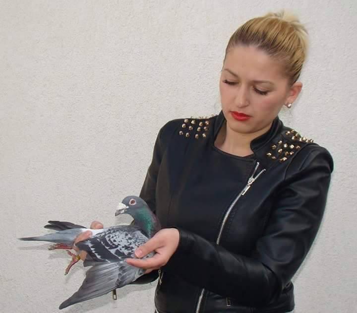 pigeons woman 170