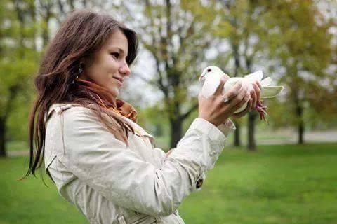 pigeons woman 183