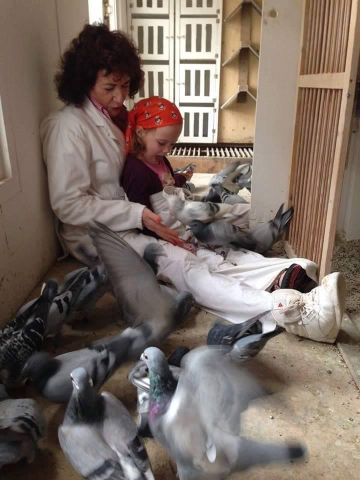 pigeons woman 184