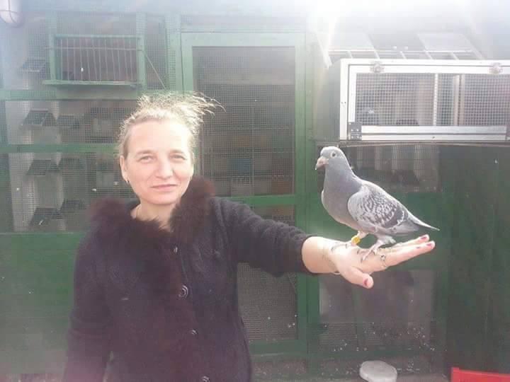 pigeons woman 189