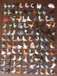 pigeon biblo 008