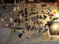 pigeon biblo 011