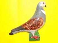 pigeon biblo 024