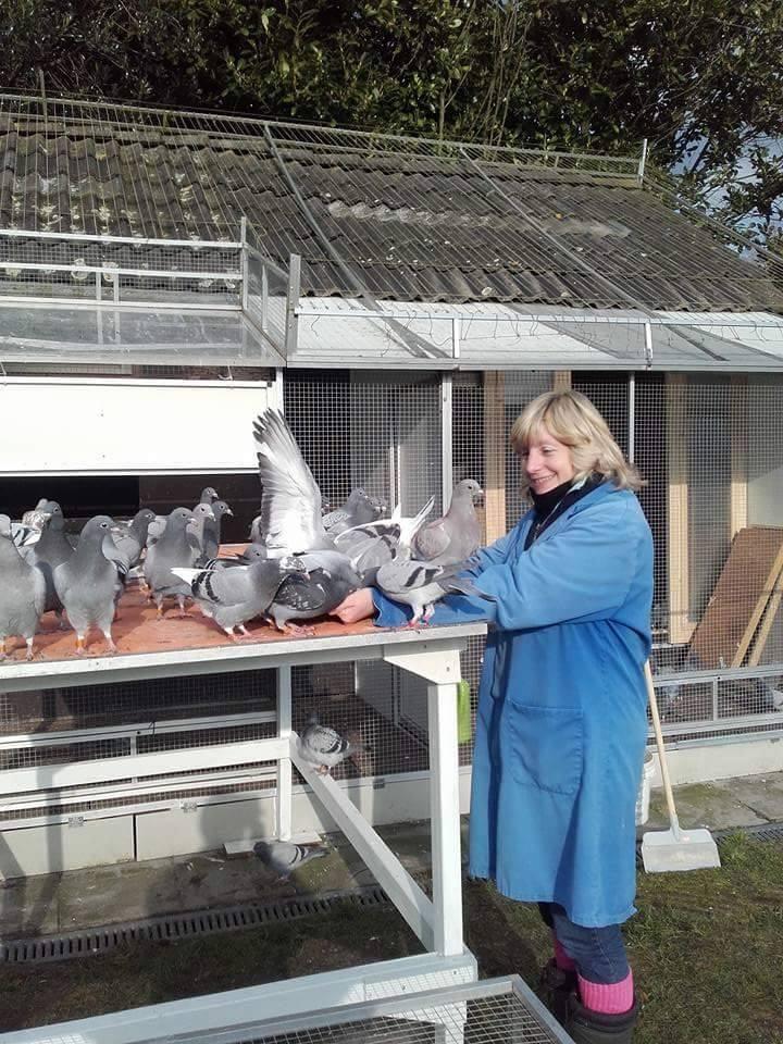 pigeons woman 001
