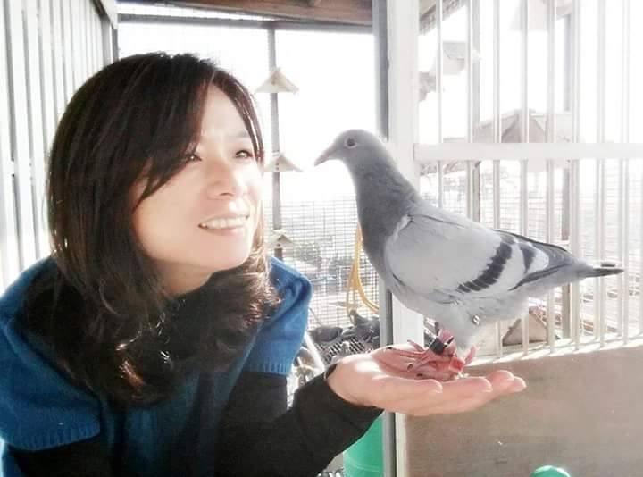 pigeons woman 002