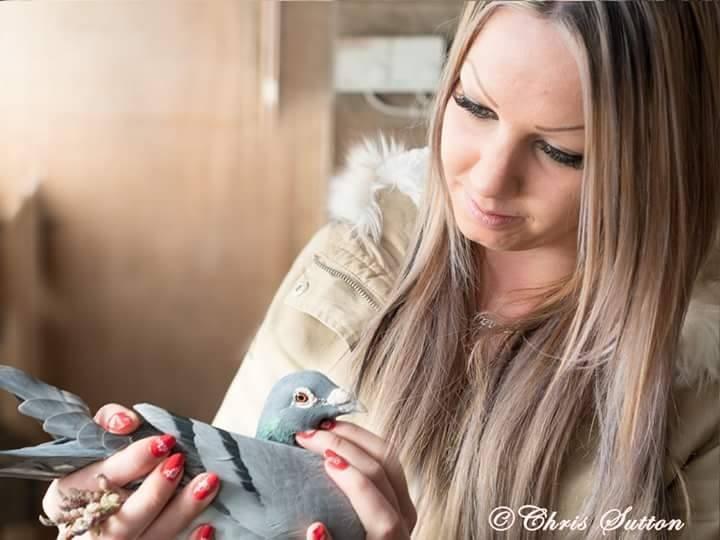 pigeons woman 006
