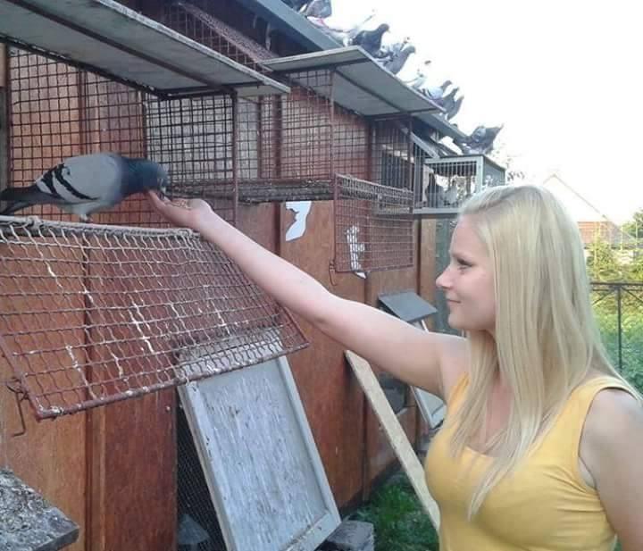 pigeons woman 084