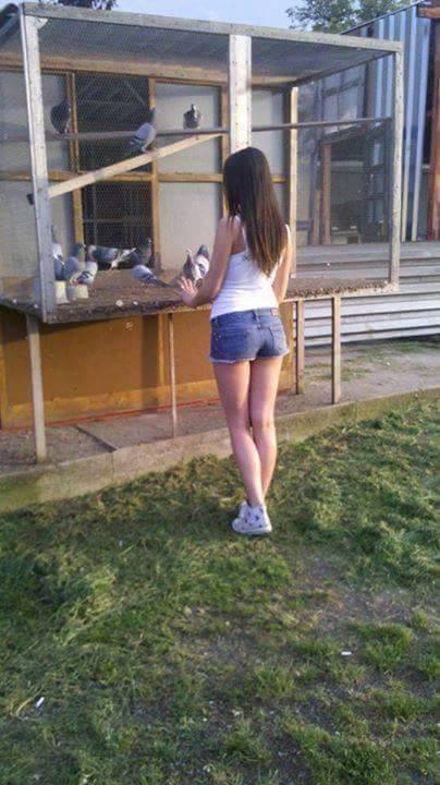 pigeons woman 131
