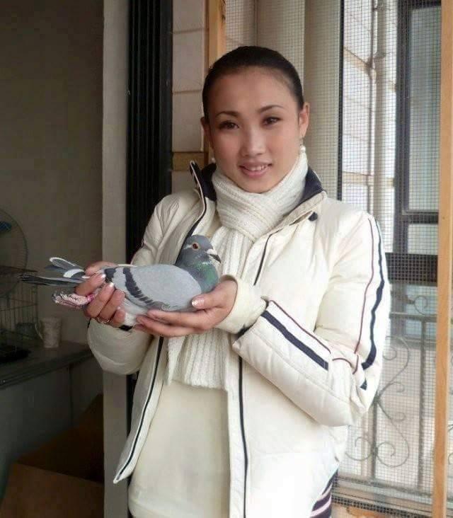 pigeons woman 134