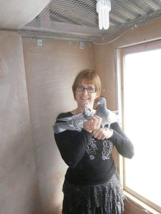 pigeons woman 151