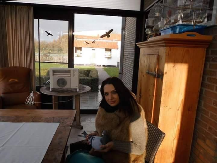 pigeons woman 154