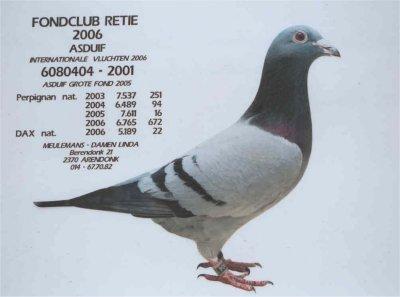 5ce24b1c95a1e - Karel Meulemans Arendonk